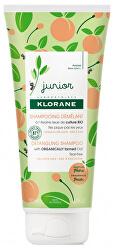 Dětský šampon Junior (Detangling Shampoop)