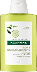 Šampon s citronem pro normální až mastné vlasy (Purifying Shampoo)