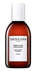 Kondicionér pro normální vlasy (Normal Hair Conditioner)