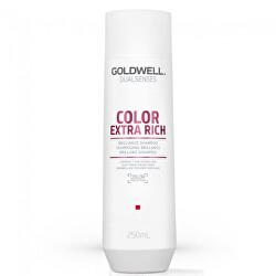 Šampon pro extra péči o barvené vlasy Dualsenses Color Extra Rich (Fade Stop Shampoo)