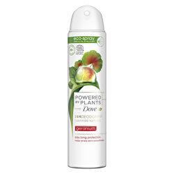 Deodorant ve spreji Pelargonie Powered by Plants Geranium (24H Deodorant) 75 ml