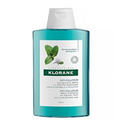 Detoxikační šampon chránící před vnějšími vlivy Máta vodní (Anti Pollution Detox Shampoo With Aquatic Mint) 200 ml