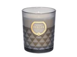 Vonná svíčka Clarity Čerstvé dřevo Fresh Wood (Candle) 180 g