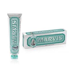 Zubní pasta s xylitolem s příchutí anýzu a máty (Anise Mint Toothpaste) 85 ml