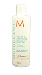 Hydratační kondicionér na vlasy s arganovým olejem (Hydrating Conditioner) 250 ml