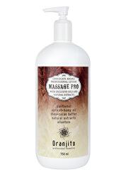 Masážní mléko Čokoláda (Massage Pro Chocolate Professional Lotion) 750 ml