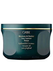 Hydratační maska na vlasy (Moisture & Control Deep Treatment Masque) 250 ml
