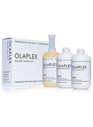 Sada pro barvené nebo chemicky ošetřené vlasy (Salon Intro Kit) 3 x 525 ml