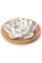 Aroma kámen Lotus Flower na dřevěném podtácku