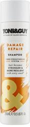 Šampón pre poškodené vlasy (Shampoo For Damaged Hair) 250 ml
