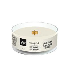 Aromatická malá svíčka s dřevěným knotem Solar Ylang 31 g