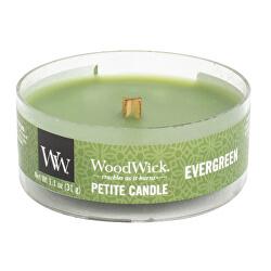 Vonná svíčka Petite Evergreen 31 g