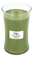 Candela profumata vaso Evergreen 609 g