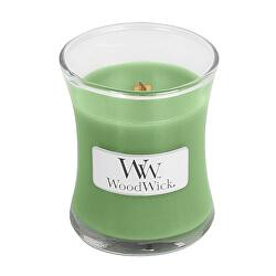 Vonná svíčka váza Hemp & Ivy 85 g