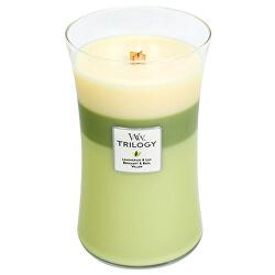 Vonná svíčka váza Trilogy Garden Oasis 609,5 g