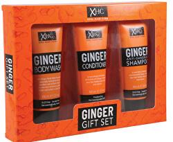 Kosmetická sada vlasové péče Ginger