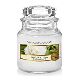 Aromatická sviečka Classic malá Camellia Blossom 104 g