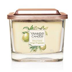 Aromatická svíčka střední hranatá Citrus Grove 347 g