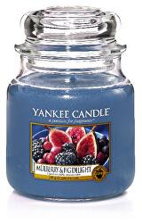 Vonná svíčka Classic střední Mulberry & Fig Delight 411 g