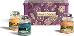 Set cadou cu lumânări parfumate Classic The Last Paradise 3 x 104 g