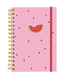 Zápisník - Meloun