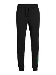 Pantaloni de trening pentru bărbați JACCHIP