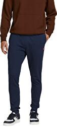 Pantaloni de trening pentru bărbați JJIWILL
