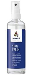 Odorizant pentru pantofi Fresh Deo 100 ml