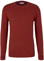 Férfi pulóver Regular Fit