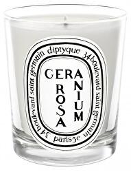 Geranium Rosa - svíčka 190 g