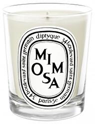 Mimosa - svíčka 190 g