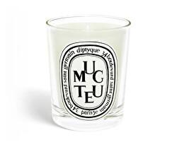 Muguet - svíčka 190 g