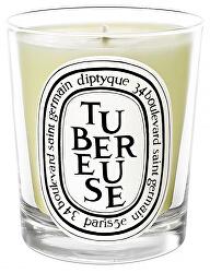 Tubereuse - svíčka 190 g