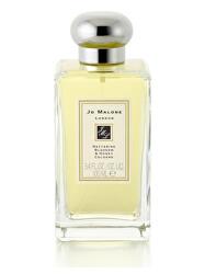 Nectarine Blossom & Honey - EDC