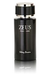 Zeus - EDP