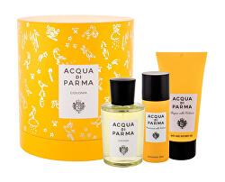 Colonia Intensa - EDC 100 ml + sprchový gel 75 ml + deodorant ve spreji 50 ml