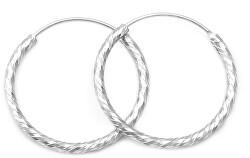 Cercei minunați rotunzi din argint AGUC350