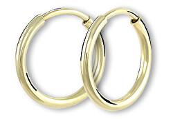 Náušnice zlaté kruhy 231 001 00487