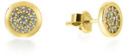 Oslnivé náušnice ze žlutého zlata SILVER009_AU_Y