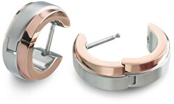 Plăci de aur placate cu titan 0560-06