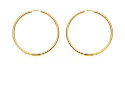 Minimalistické pozlacené náušnice kruhy SVLE0956XH2GO