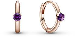 Bronzové kruhové náušnice s fialovými kryštálmi Rose 289304C01