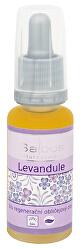 Bio regenerační obličejový olej - Levandule