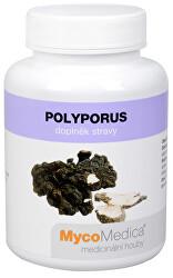 Polyporus 90 kapsúl