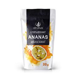 Lyofilizovaný ananás 20 g