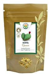 Nopál - Opuncie prášek