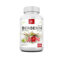 Berberín Extrakt 98% 500 mg 60 kapsulí