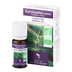 Éterický olej eukalyptus radiata 10 ml BIO