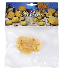 Přírodní mořská houba - Středomořská – SILK FINE – SVĚTLÁ