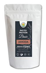 Phyto Protein Basic 300 g